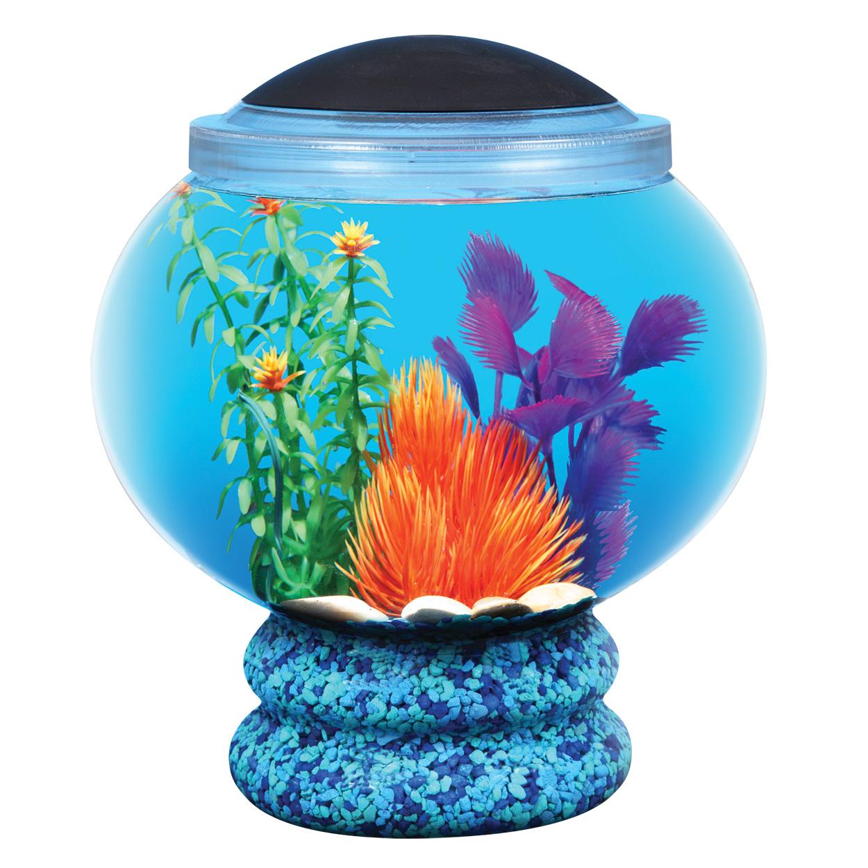 API Betta Bowl with Pedestal Aquarium Kit - 1.6 gal 65208
